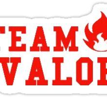 Team Valor Sticker Sticker