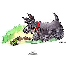 Scottie and a frog by groovyart