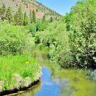 Bishop Creek by marilyn diaz