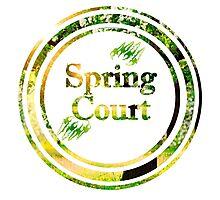 Spring Court Photographic Print