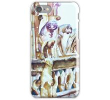 Notre-Dame Sentinels iPhone Case/Skin