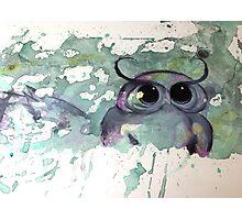 Rorschach Owl Photographic Print