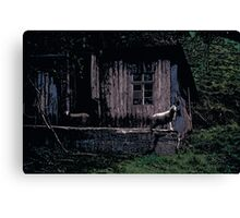 Cabin // Comic Style Canvas Print