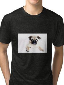 Pug (Dog) Tri-blend T-Shirt