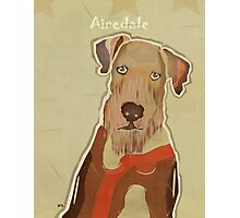 the airedale terrier  Photographic Print