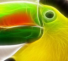 Toucan by eltdesigns
