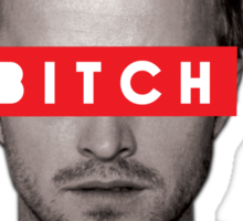 Jesse Pinkman - Bitch. Sticker