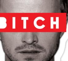 Jesse Pinkman - Bitch. Sticker
