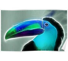 Toucan (blue) Poster