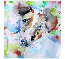 JACK RUSSELL TERRIER - watercolor portrait.3 Poster