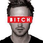 Jesse Pinkman - Bitch. by CGiliberti