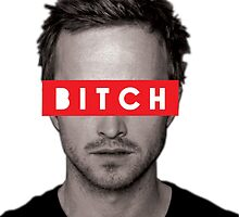 Jesse Pinkman - Bitch. by CGiliberti