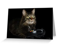gamer cat Greeting Card