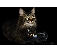 gamer cat Photographic Print