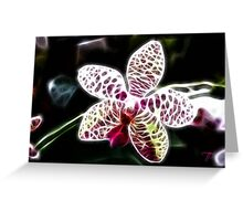Orchid numero uno Greeting Card
