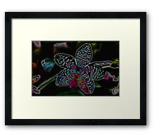 Orchid numero dos Framed Print