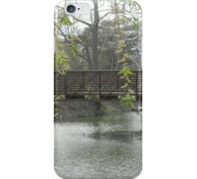 Willow over Bridge iPhone Case/Skin