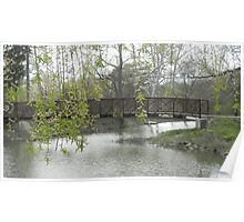 Willow over Bridge Poster
