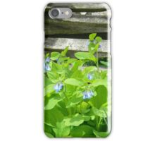 Bluebells along the Fence iPhone Case/Skin