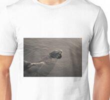 Sea Lion II Toned Unisex T-Shirt