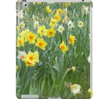 Mixed Daffodils  iPad Case/Skin