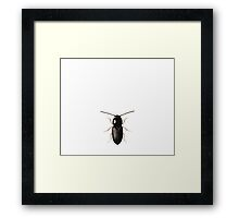 Beetles Dress Framed Print