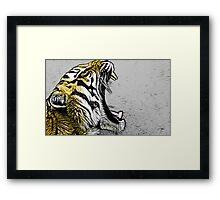 Tiger numero uno Framed Print
