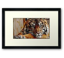 Tiger numero dos Framed Print