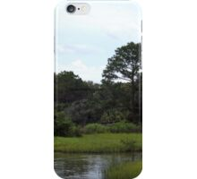 Princess Plantation 14 iPhone Case/Skin