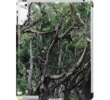 Princess Plantation 16 iPad Case/Skin