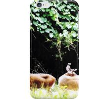Princess Plantation 20 iPhone Case/Skin
