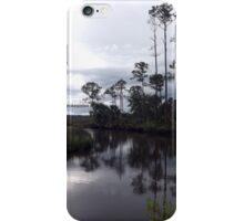 Princess Plantation 22 iPhone Case/Skin