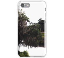Princess Plantation 23 iPhone Case/Skin