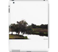 Princess Plantation 23 iPad Case/Skin
