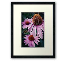 Flower 31 Framed Print