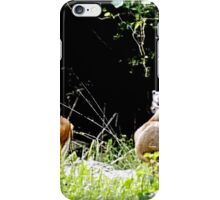 Princess Plantation 30 iPhone Case/Skin