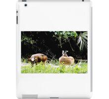 Princess Plantation 30 iPad Case/Skin