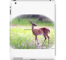 Princess Plantation 31 iPad Case/Skin