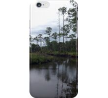 Princess Plantation 32 iPhone Case/Skin
