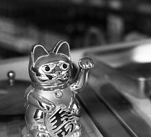 Chinese store cat - Martim Moniz by vssff