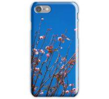 San Francisco Flowers iPhone Case/Skin
