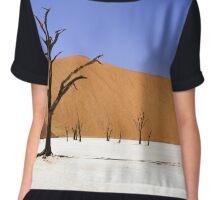 Desert Lanscape Chiffon Top