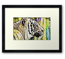 Tiger numero quatro Framed Print