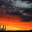 Brilliant Sunrise by © Loree McComb