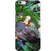 Wild Mushrooms by Matthew Lys iPhone Case/Skin