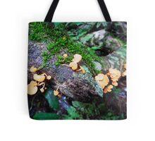 Wild Mushrooms by Matthew Lys Tote Bag