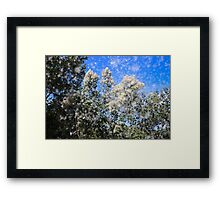 Cloud Of White By Matthew Lys Framed Print