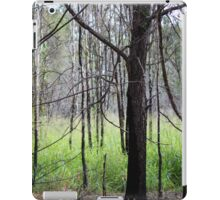 Abandoned By Matthew Lys iPad Case/Skin