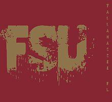 FSU by mbswiatek