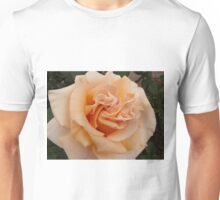 Soft Peach Unisex T-Shirt